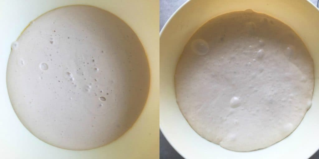 Ciabatta Bread First Rise vs Second Rise