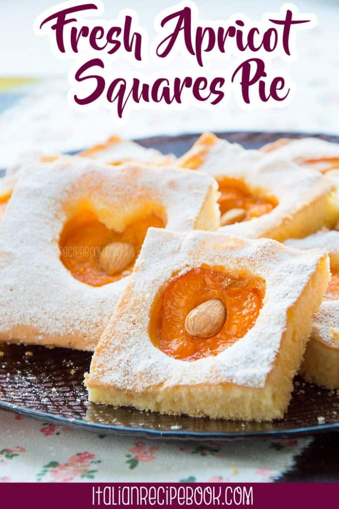 Fresh Apricot Squares Pie {Melts in the mouth!!}