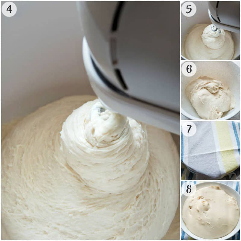 Kneading Focaccia Dough in a stand mixer and dough rise